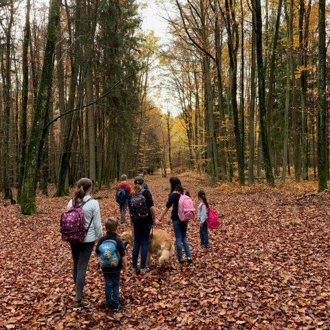 Ferienaktion Herbst 2020 Gruppe Sonne